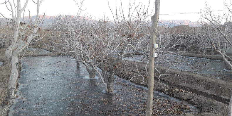 یخ آب زمستانه