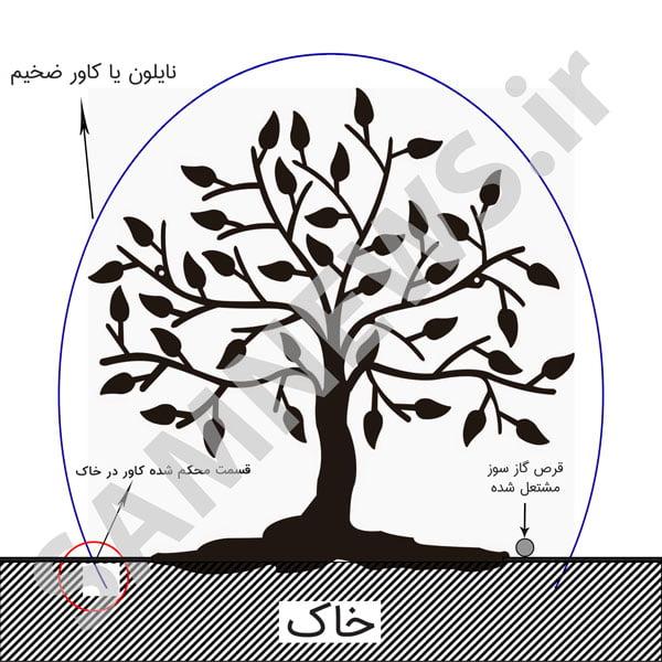 tree fumigation، گاز دهی درخت با قرص گاز سوز هلاک
